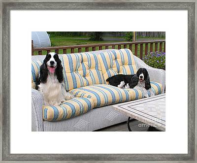 #940 D1084 Farmer Browns Separate But Always Together Framed Print by Robin Lee Mccarthy Photography