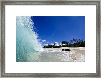 Blue Curl Framed Print by Sean Davey