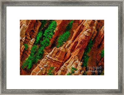 A Bryce Geological Treasures  Framed Print by Blake Richards
