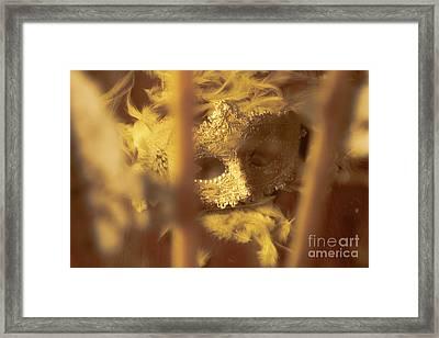 A Cabaret Mystery Framed Print by Jorgo Photography - Wall Art Gallery