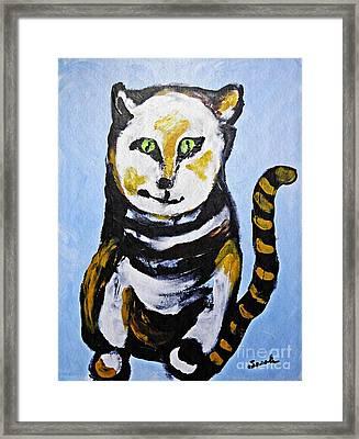 A Cat For Lynne Framed Print by Sarah Loft