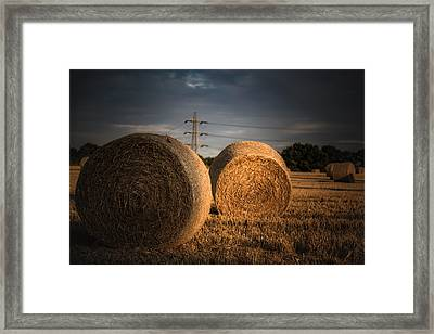A Cereal Drama Framed Print by Chris Fletcher
