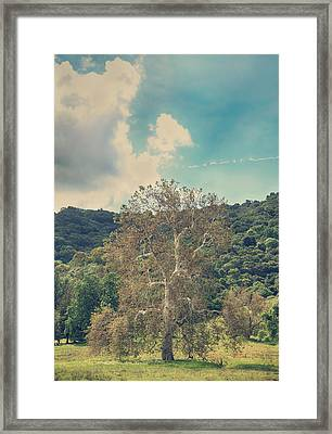 A Certain State Of Being Framed Print by Laurie Search