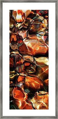 A Closer Look Framed Print by Terril Heilman