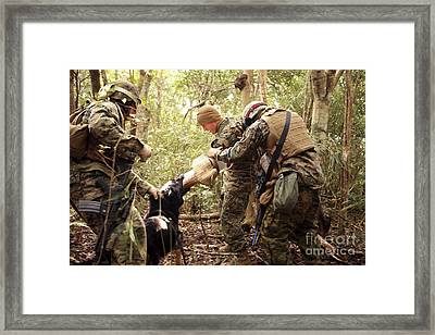 A Combat Tracking Dog Subdues A Mock Framed Print by Stocktrek Images