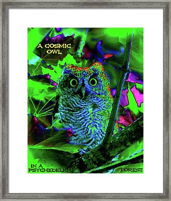 A Cosmic Owl In A Psychedelic Forest Framed Print by Ben Upham