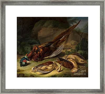 A Dead Pheasant Framed Print by Stephen Elmer