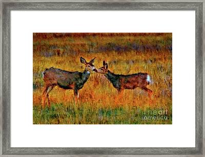 A Deer Kiss Framed Print by Blake Richards