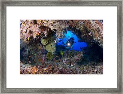 A Diver Peers Through A Coral Encrusted Framed Print by Steve Jones