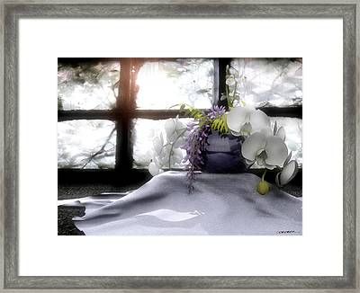 A Dream Of Orchids Framed Print by Cynthia Decker