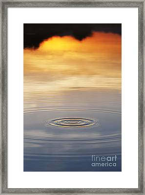 A Drop In The Ocean  Framed Print by Tim Gainey