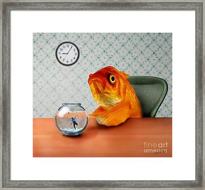 A Fish Out Of Water Framed Print by Carrie Jackson