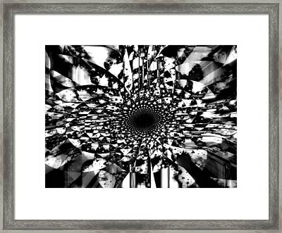A Flower Named Fania Framed Print by Fania Simon