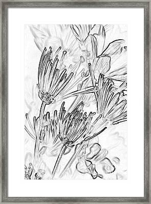 A Flower Sketch Framed Print by Julie Lueders