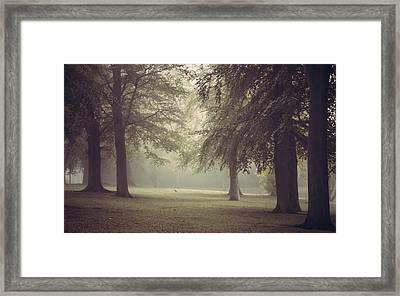 A Foggy Morning Framed Print by Chris Fletcher