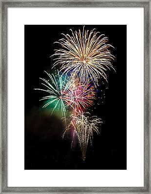 A Fourth Of July Bouquet  Framed Print by Saija  Lehtonen