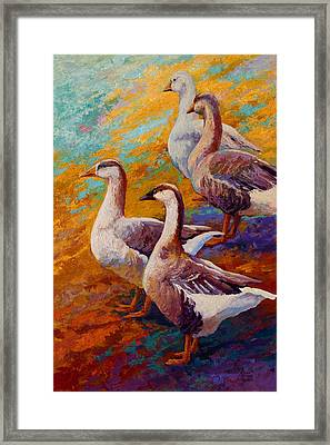 A Gaggle Of Four - Geese Framed Print by Marion Rose