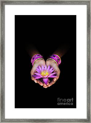 A Gift Framed Print by Tim Gainey