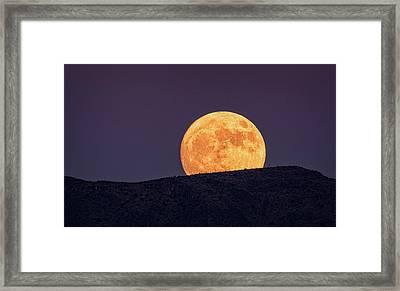 A Golden Super Moon Rising  Framed Print by Saija Lehtonen
