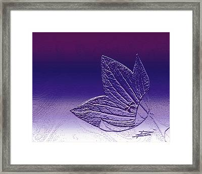 A Good Day For Purple Framed Print by Barbara  White