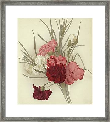 A Group Of Clove Carnations Framed Print by English School