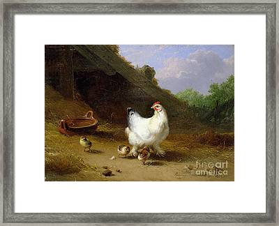 A Hen With Her Chicks Framed Print by Eugene Joseph Verboeckhoven