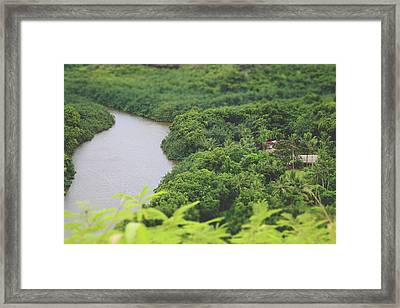 A Jungle Story Framed Print by Laurie Search