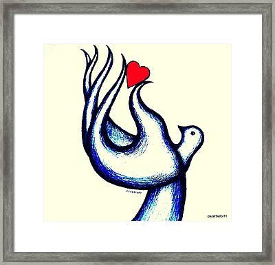 A Little Love Framed Print by Paulo Zerbato