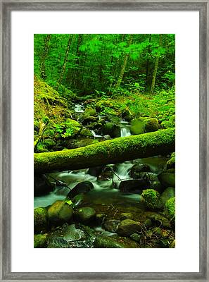 A Log Over Water Framed Print by Jeff Swan