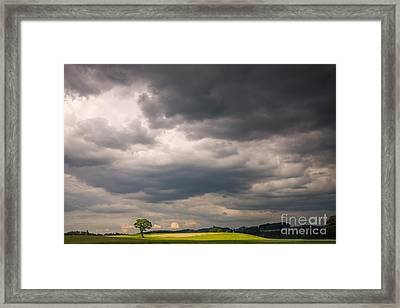 A Lone Tree Under A Stormy Sky Framed Print by Ning Mosberger-Tang