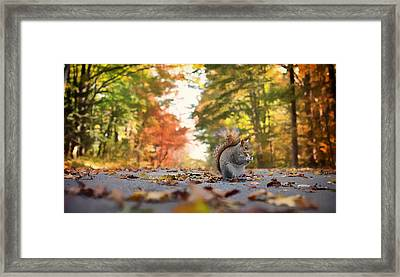 A Meal On The Road Framed Print by Mountain Dreams