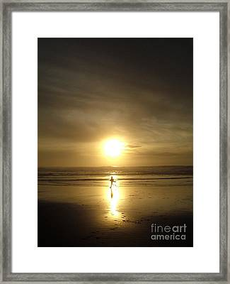 A Moment In The Sun Framed Print by Nick Gustafson