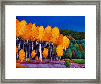A Moment In Time Framed Print by Johnathan Harris