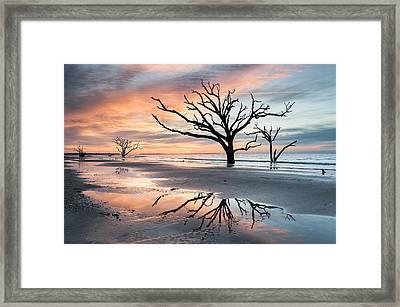 A Moment Of Reflection - Charleston's Botany Bay Boneyard Beach Framed Print by Mark VanDyke