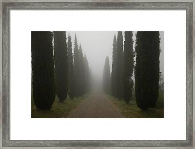 A Morning Mist Makes Its Way Framed Print by Joel Sartore