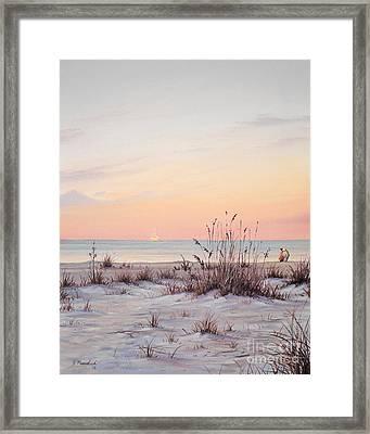 A Morning Stroll Framed Print by Joe Mandrick