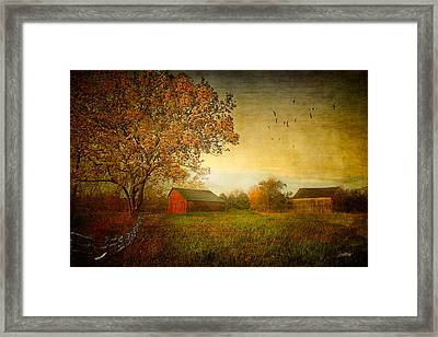 A New Dawn Framed Print by Michael Petrizzo
