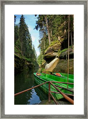 A Path To Joy Framed Print by Dominika Aniola