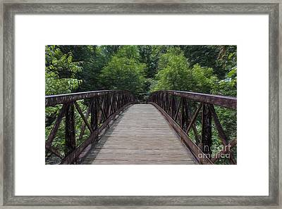 A Pathway To Nature Framed Print by Barbara McMahon
