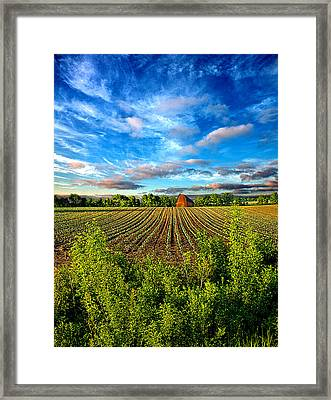 A Perfect Beginning Framed Print by Phil Koch