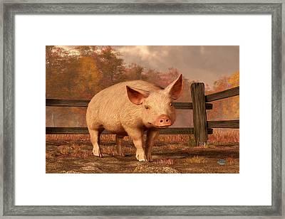 A Pig In Autumn Framed Print by Daniel Eskridge
