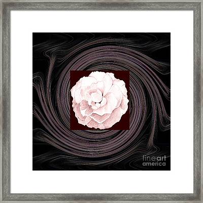A Pink Rose And The Bigger Picture Framed Print by Helena Tiainen