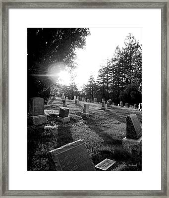 A Place To Rest Framed Print by Donna Blackhall