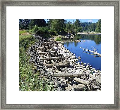 A Puzzle In Nature Framed Print by Laurie Kidd
