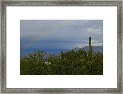 A Rainbow In The Desert Framed Print by Teresa Stallings