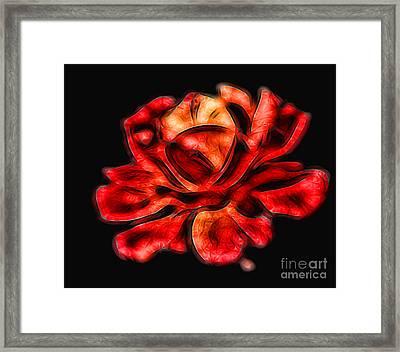 A Red Rose For You 2 Framed Print by Mariola Bitner
