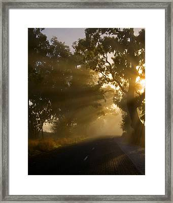 A Road Less Traveled Framed Print by Mike  Dawson