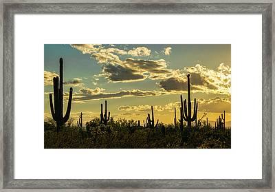 A Saguaro Silhouette Sunset  Framed Print by Saija Lehtonen