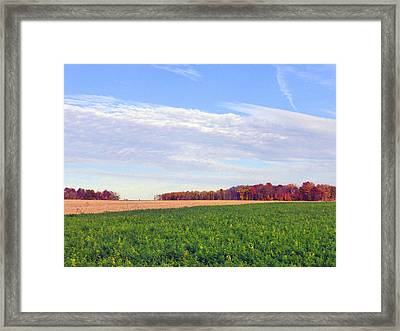 A Serene Autumn Landscape 2015 Framed Print by Tina M Wenger