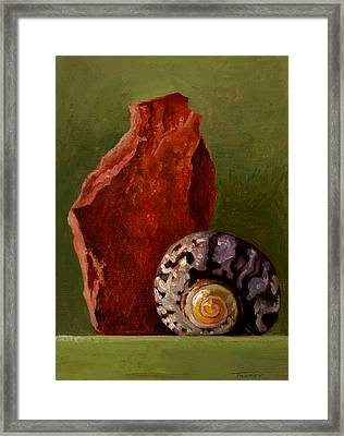 A Shell And Rock Conversation Framed Print by Catherine Twomey